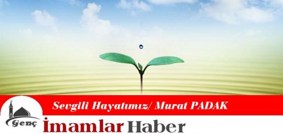 Sevgili Hayatımız / Murat PADAK